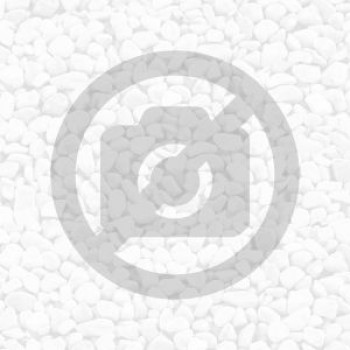 Terasový profil elox stříbro 10 mm / 2,5m STONE